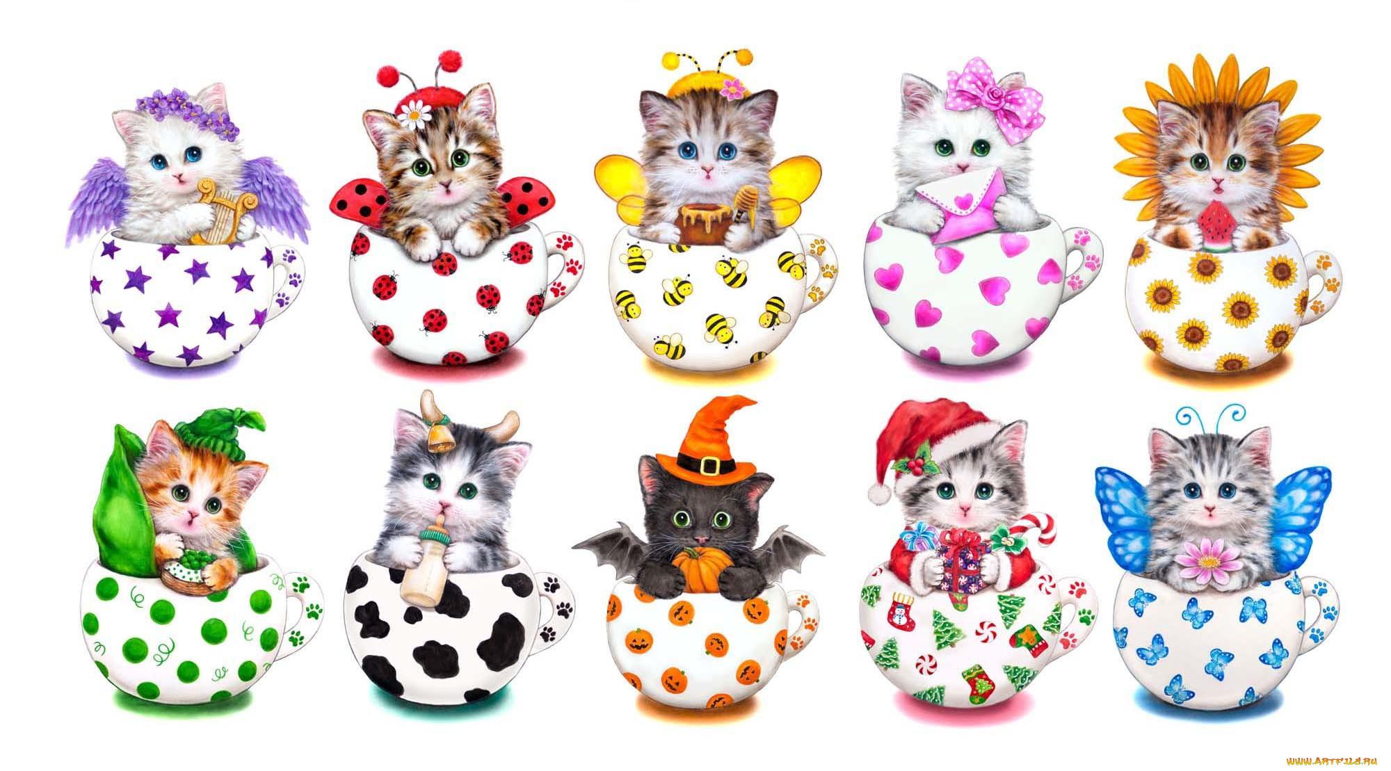 картинки мультяшные котята в кружке результат пользу горожан